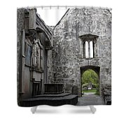 Muckrooss Abbey Ruin Shower Curtain