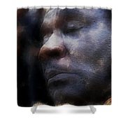 Muddy Jr. Traveling Pigments Hp Shower Curtain