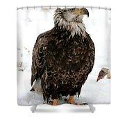 Mudhen Shower Curtain
