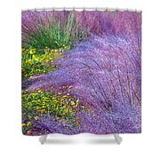 Muhly Grass In The Morning Shower Curtain