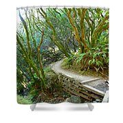 Curve In The Dipsea Shower Curtain
