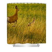 Mule Deer Doe And Fawn-signed-#0365 Shower Curtain
