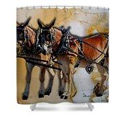 Mules In Full Dress Shower Curtain