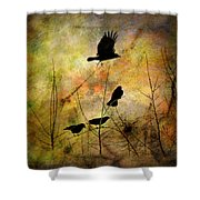 Muliti-colored Dreams Shower Curtain