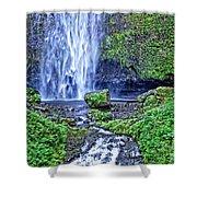 Mulnomah Falls Shower Curtain