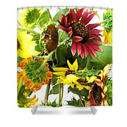Multi-color Sunflowers Shower Curtain
