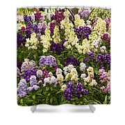 Multi-colored Blooms Shower Curtain