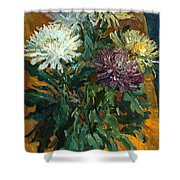 Multi Colored Chrysanthemums Shower Curtain