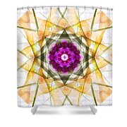 Multi Flower Abstract Shower Curtain