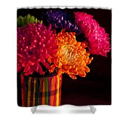 Multicolored Chrysanthemums In Paint Can On Chest Of Drawers Int Shower Curtain