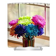 Multicolored Chrysanthemums In Paint Can On Window Sill Shower Curtain