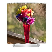 Multicolored Daisies On Window Sill Shower Curtain
