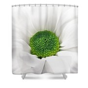 Mumilicious Shower Curtain
