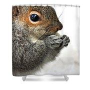 Munching Shower Curtain