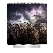 Murder Once A Year Shower Curtain