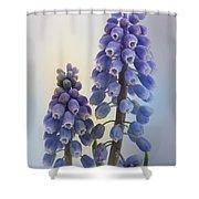 Muscari Shower Curtain