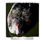 Muscovy 14-2 Shower Curtain