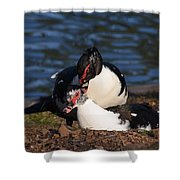 Muscovy Love Shower Curtain