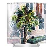 Museum Palm Shower Curtain