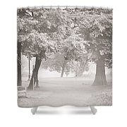 Museum Park Fog Shower Curtain