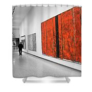 Museum Series 14 Shower Curtain