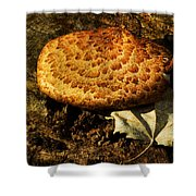 Mushroom And Leaf Shower Curtain