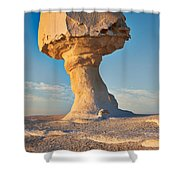Mushroom Formation In White Desert  Shower Curtain