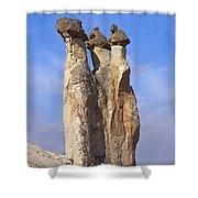 Mushroom Stems Shower Curtain