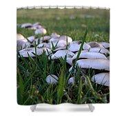 Mushrooms Shower Curtain