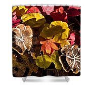Mushrooms In Fall Leaves Shower Curtain