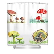 Mushrooms On Parade Collage Shower Curtain