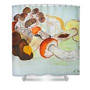 Mushrooms Time Shower Curtain