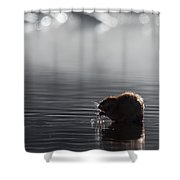 Muskrat Square Shower Curtain