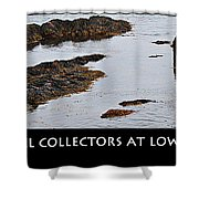 Mussel Collectors At Low Tide - Shellfish - Low Tide Shower Curtain