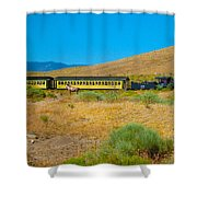 Mustang Days Shower Curtain