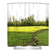 Mustard Fields In Kashmir On The Way To The Town Of Sonamarg Shower Curtain