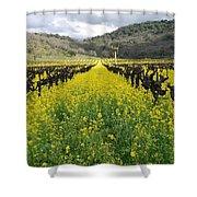 Mustard In The Vineyard Shower Curtain