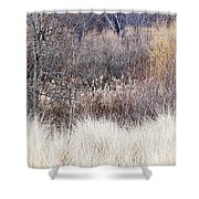 Muted Colors Of Winter Forest Shower Curtain