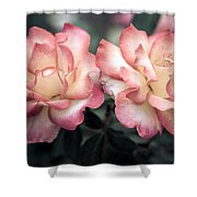 Muted Pink Roses Shower Curtain