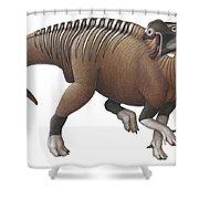 Muttaburrasaurus Dinosaur Shower Curtain