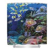 Mutton Reef Re002 Shower Curtain by Carey Chen