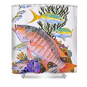 Mutton Snapper Reef Shower Curtain