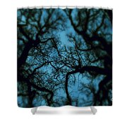 My Blue Dark Forest Shower Curtain