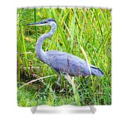 My Blue Heron Shower Curtain by Greg Fortier