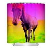 My Dream Comes Through And It's A Little Friend  Shower Curtain