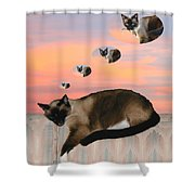 My Favorite Dream - Mouse Hunt Shower Curtain