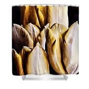My Favorite Tulips Shower Curtain