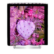 My Heart Pains Me To Be Without You 3 Shower Curtain