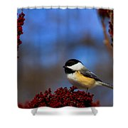 My Little Chicadee Shower Curtain