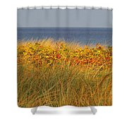 My Love Awaits Me By The Sea 2 Shower Curtain
